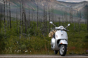 calgary travel photographer vespa adventures photo