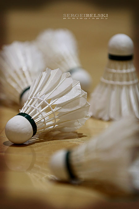 calgary sports photographer mount royal university badminton photo