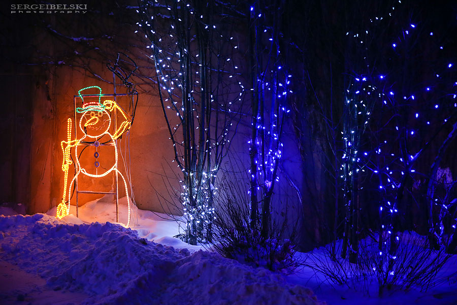zoo christmas lights event photographer sergei belski photo